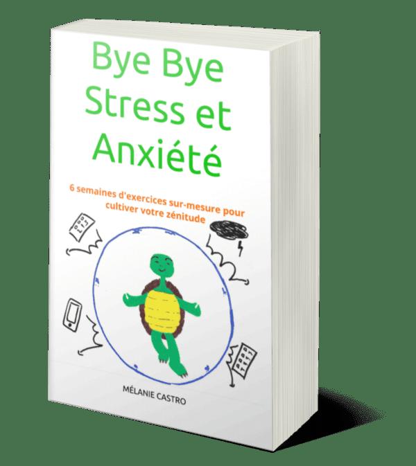 livre-bye-bye-stress-anxiete